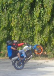 Stuntshow mit mir